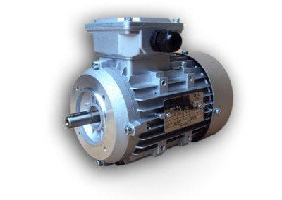 Silniki elektryczne w obudowie IEC